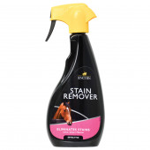Stain Remover Lincoln