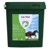 Linseed Plus2.5kg