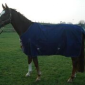 Outdoordeken 600D Fleece - Blauw